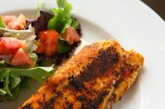 Seasoned Fillet Of Fish Stock Photo