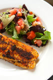 Seasoned Fillet Of White Fish Royalty Free Stock Photography