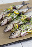Seasoned Fish. Fish, seasoned with fresh herbs and lemon Stock Photography