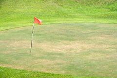 Seasoned Golf Green. Seasoned golf putting green, with flag in the hole Stock Photo