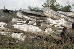 Seasoned logs. Pile of seasoned and weathered logs cut from tree trunks from a local forest, with a pile of gravel in the background stock image