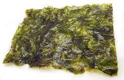 Seasoned nori seaweed. One seasoned piece of snacking nori, seaweed Stock Photography