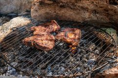 Grill in nature stock photos
