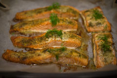Seasoned savory fish fillets Stock Photo