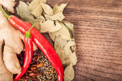 Seasoning concept - Assortment of fresh and dry spices on wooden royalty free stock photo