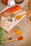 Seasoning - Dry and fresh spices Stock Image