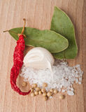Seasoning mixes Royalty Free Stock Images