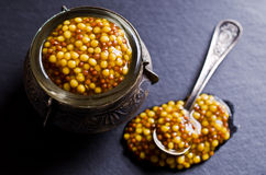 Seasoning from mustard seeds Stock Image