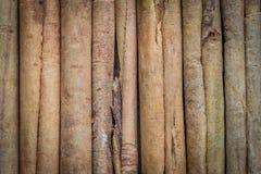 Seasoning, natural cinnamon, sticks, close-up stock images