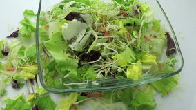 Seasoning salad with dry basil slow motion stock footage