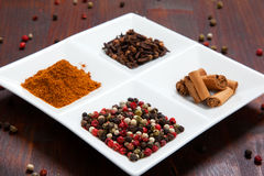 Seasoning spices Stock Image