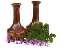 Seasonings & garnishes. Cruets (condiments) & Herbs, Salt, Pepper, Salvia & Parsley, Seasonings and Garnishes Stock Photography