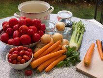 Seasonly riped des légumes avec la vieille mode préservant des pots, faisant cuire le pot Images libres de droits