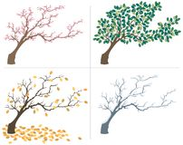 Seasons. A tree, shown during the four seasons. No transparency and gradients used stock illustration