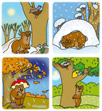 Seasons. Little bear cub at different times of the year Stock Photos