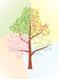 Seasons Royalty Free Stock Images