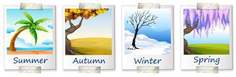 Seasons artwork. Illustration of the seasons artwork on a white background Stock Photo