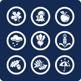 Seasons: Autumn icons (set 4, part 1) stock image