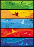 Seasons birds banners. Set of  5  vector illustrations with floral design Royalty Free Stock Photos