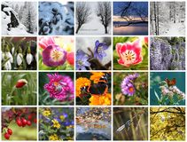 Seasons collage Royalty Free Stock Photography
