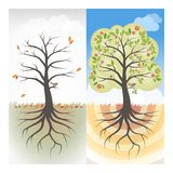 Seasons. Concept with one dry withered tree and one healthy tree with flowers Royalty Free Stock Photos