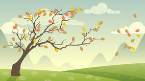 Seasons Cycle stock video footage