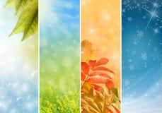 Seasons Royalty Free Stock Photography