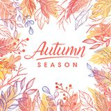 Seasons greetings card. Autumn season.Hand drawn lettering with leaves in fall colors.Seasons greetings card perfect for prints, flyers, banners,invitations Vector Illustration