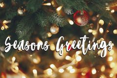 Seasons greetings text, beautiful stylish christmas tree with ga Royalty Free Stock Photography