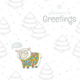Seasons greetings. Winter card with sheep in knitted sweater Royalty Free Stock Photos