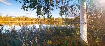 Seasons landscape for web banners Royalty Free Stock Photos