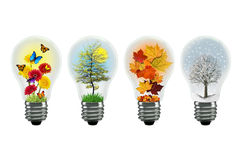 Seasons lightbulb Stock Photography