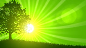 4 Seasons: Spring (Animated Background) vector illustration