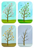 Seasons Stock Images