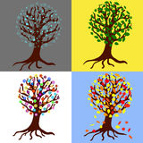 Seasons trees Royalty Free Stock Photography