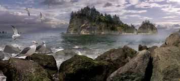 Seastack Sanctuary. A chilling scene of the rugged sea stacks off the rocky coastline of La Push, Washington State – July 2006 Royalty Free Stock Images