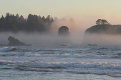Seastacks on Wild Pacific Coast, Olympic National Stock Photo