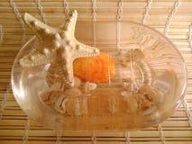 Seastar на блюде мыла Стоковое Фото