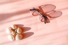 Seastar, coquillage et lunettes de soleil élégantes modernes sur le fond de papier rose à la mode au soleil Concept tropical de v photographie stock libre de droits