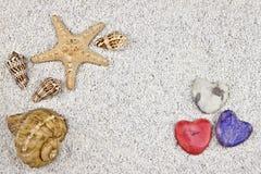 Seastar e escudos Foto de Stock Royalty Free