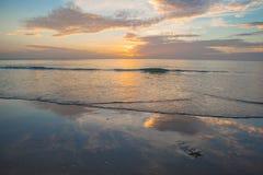 Seastar en la playa Fotos de archivo libres de regalías