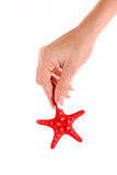 Seastar in hand isolated Stock Images