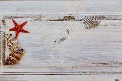 Seastar rouge et coquillages au-dessus du fond rustique blanc photos stock