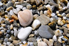 Seastones στοκ φωτογραφίες με δικαίωμα ελεύθερης χρήσης
