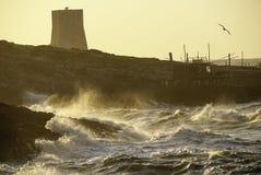 Seastorm Zdjęcia Stock