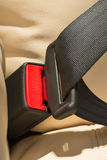 Seat belt. On a beige leather seat Stock Images