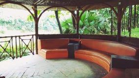 Seat dla Naturalnych wydarzeń Obrazy Royalty Free