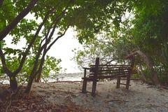 Seat en bois à l'ombre des arbres verts dans la forêt littorale sur Sandy Beach blanc - paix et relaxation photo stock