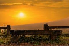 Seat et coucher du soleil Image stock
