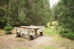 Seat i skog arkivfoton